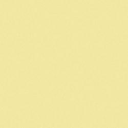 Carrelage uni jaune 20x20 cm BANANA MATT - 1.4m²