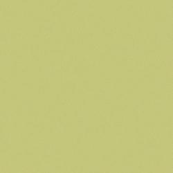 Carrelage uni 20x20 cm vert olive MELA MATT - 1.4m²