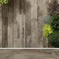 Carreau imitation bois 20x120 cm WOODMANIA Ash R10- 0.96 m²