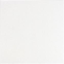Carrelage uni 31.6x31.6 cm blanc TOWN BLANCO - 1m²