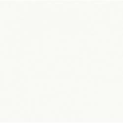 Faïence blanche brillante ELOYA ARTIC 15X15 - 0,63 m²